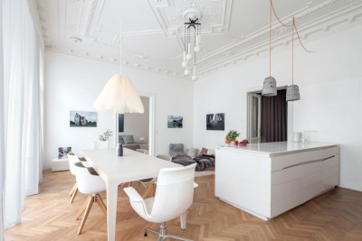 Modern Renovation Of A Classic Apartment in Viennese