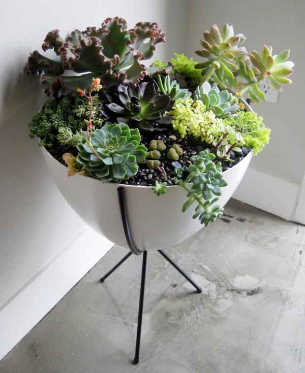 bullet planter 25 Indoor Garden Ideas