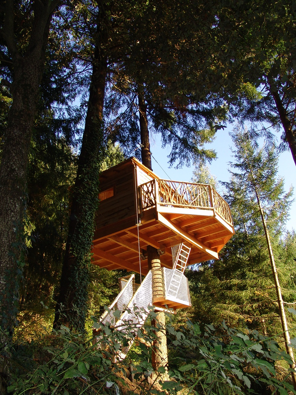 10 Most Amazing Treehouse Hotels From Which You Would Never Wish To Check Out