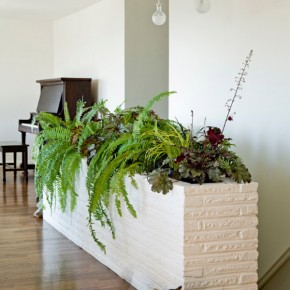 25 Indoor Garden Ideas