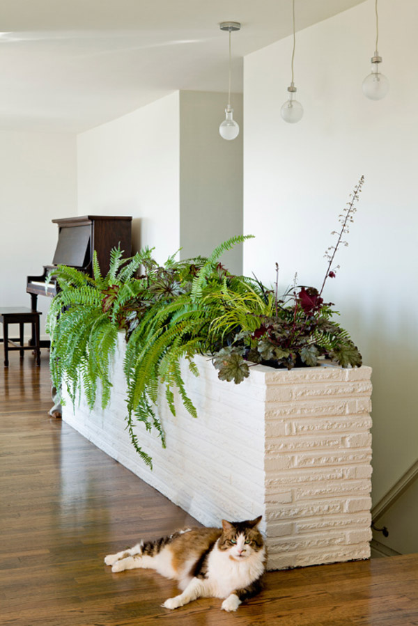 Exceptional Indoor Gardening Ideas Part - 12: 25 Indoor Garden Ideas