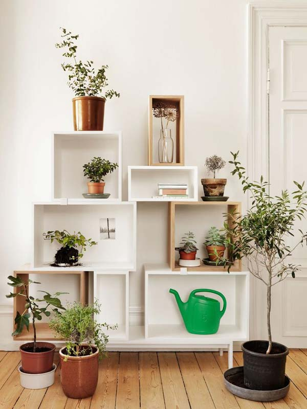 Mini Indoor Gardening Shelves Mini Indoor Gardening 25 Indoor Garden Ideas