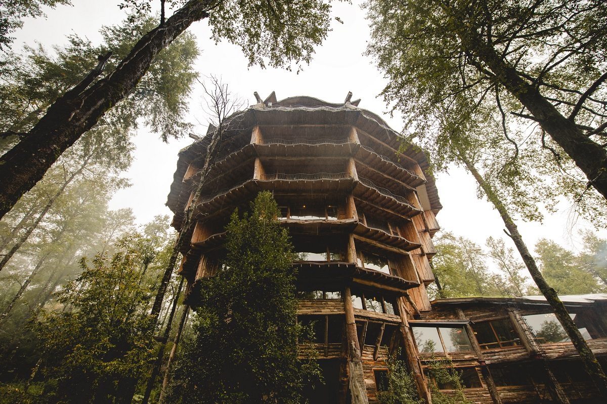 nothofagus hotel spa chile 10 Most Amazing Treehouse Hotels From Which You Would Never Wish To Check Out