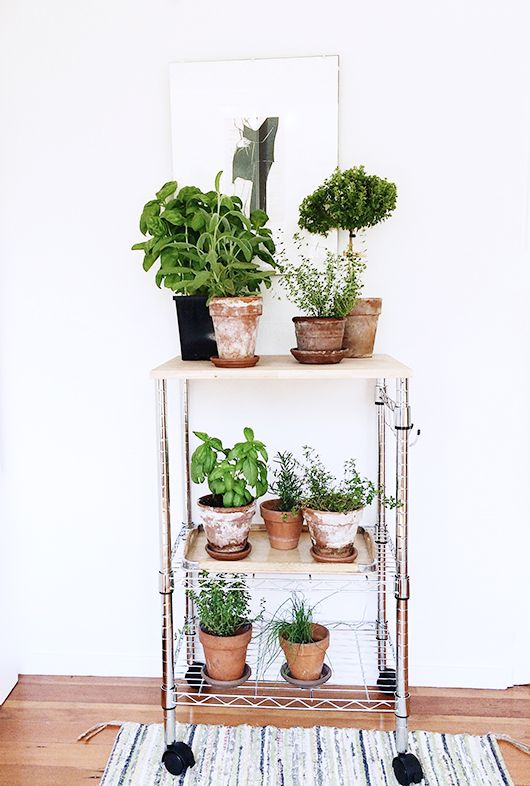 portable garden 25 Indoor Garden Ideas