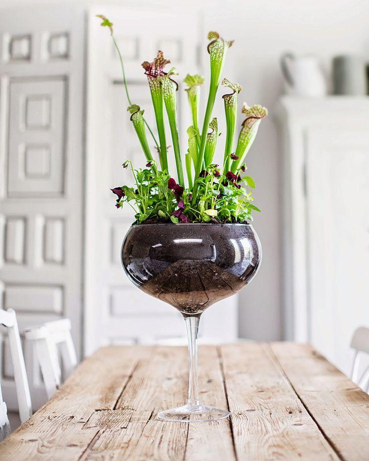 table garden 25 Indoor Garden Ideas