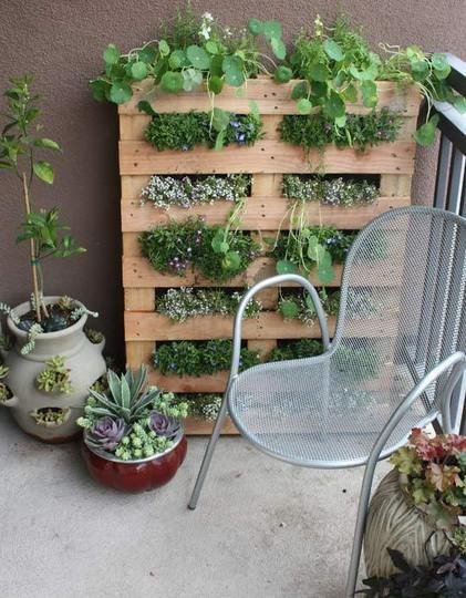 Tiny Balcony Pallet Garden Tiny Balcony Pallet Garden 25 Indoor Garden Ideas