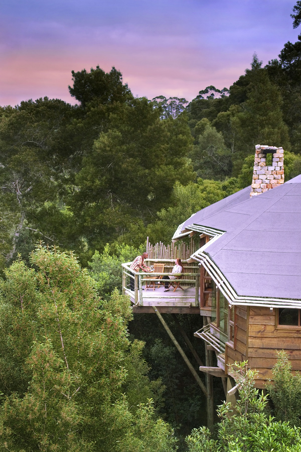 tsala treetop lodge south africa 10 Most Amazing Treehouse Hotels From Which You Would Never Wish To Check Out