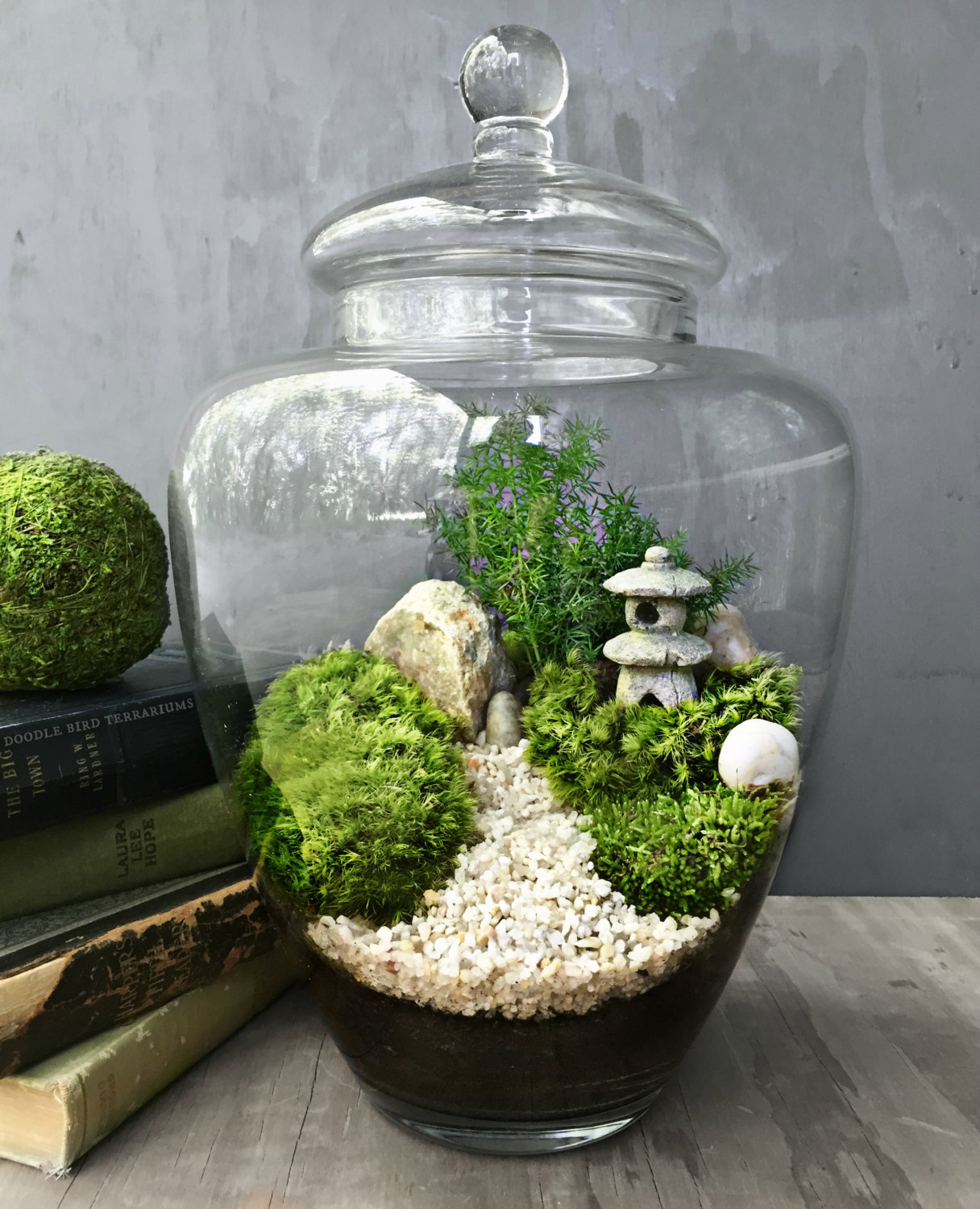 The Urban Grow Terrarium Your No1 Source Of