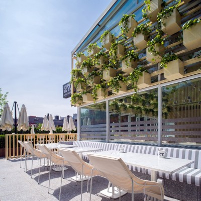 Transformed greenhouse into plant-lined coffee shop by the Four O Nine architects