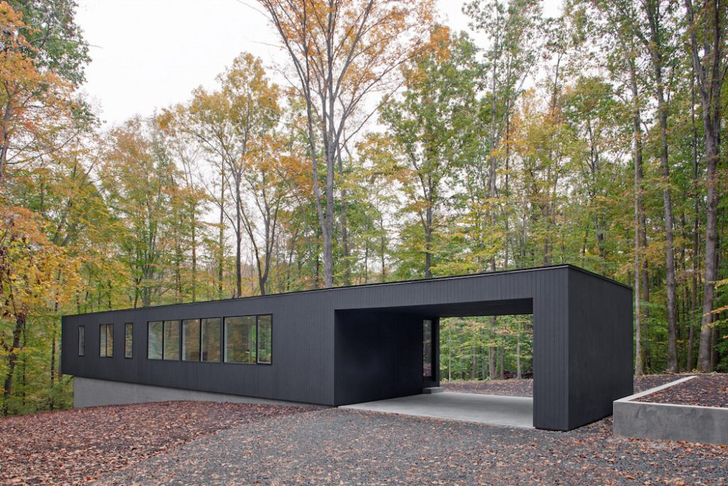 black house hidden in the forest by in situ studio 1 1024x683 Black House Hidden In The Forest By in situ studio