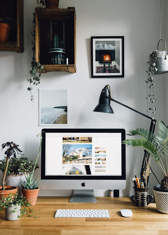 pictures and plants in a home office How To Create A More Productive Home Office Environment