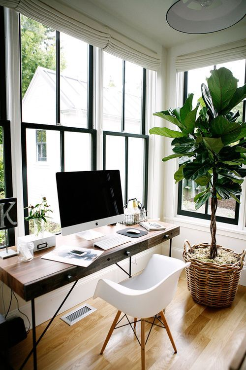 plants in a home office How To Create A More Productive Home Office Environment