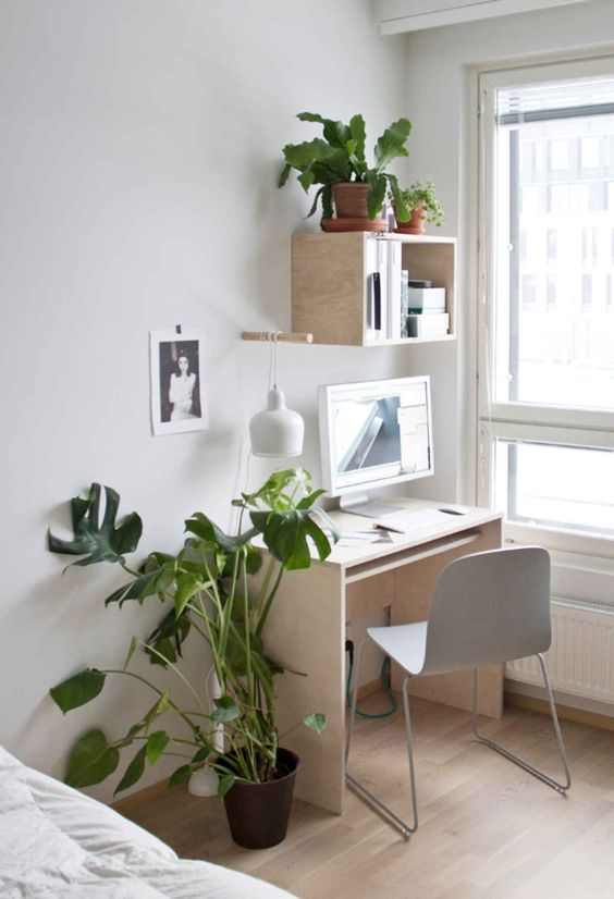 small workspace with some plants How To Design The Perfect Office For Your Home