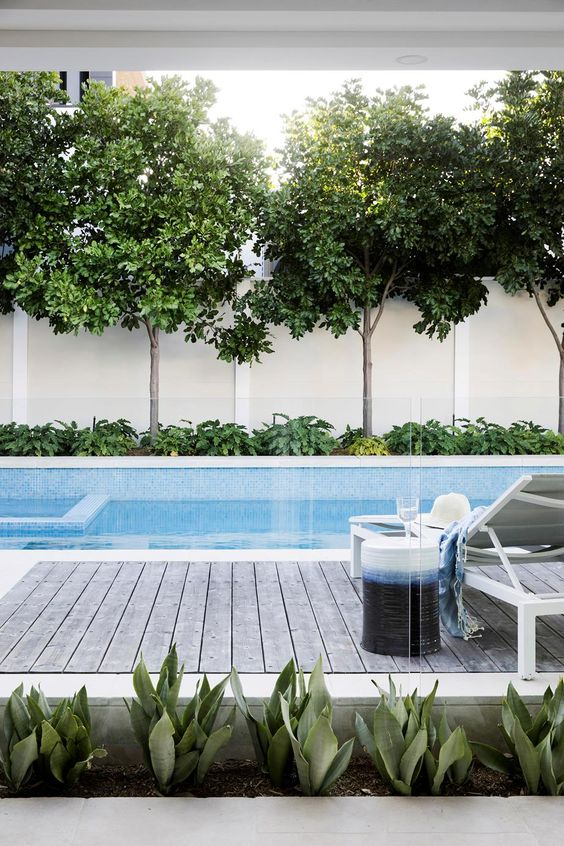 Why getting frameless fencing is essential if you have a pool in Sydney