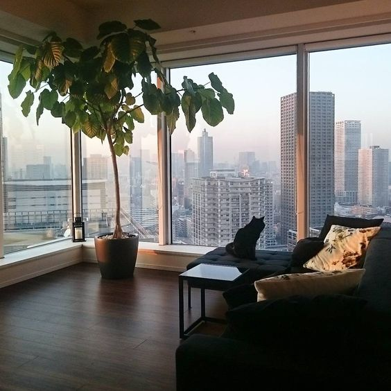 Tips On How To Decorate The Interior Of A High Rise Apartment