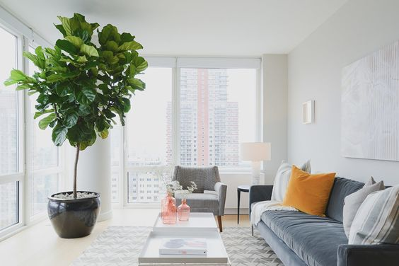 greenery Tips On How To Decorate The Interior Of A High Rise Apartment