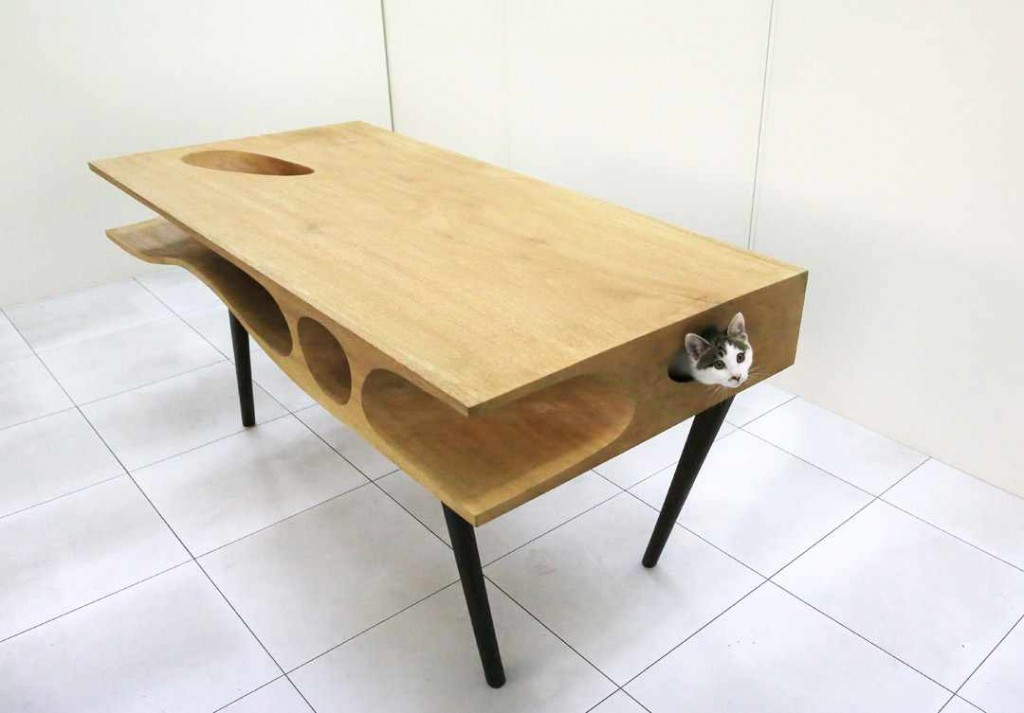 cat 1024x713 10 Interior Spices: Modern Tables