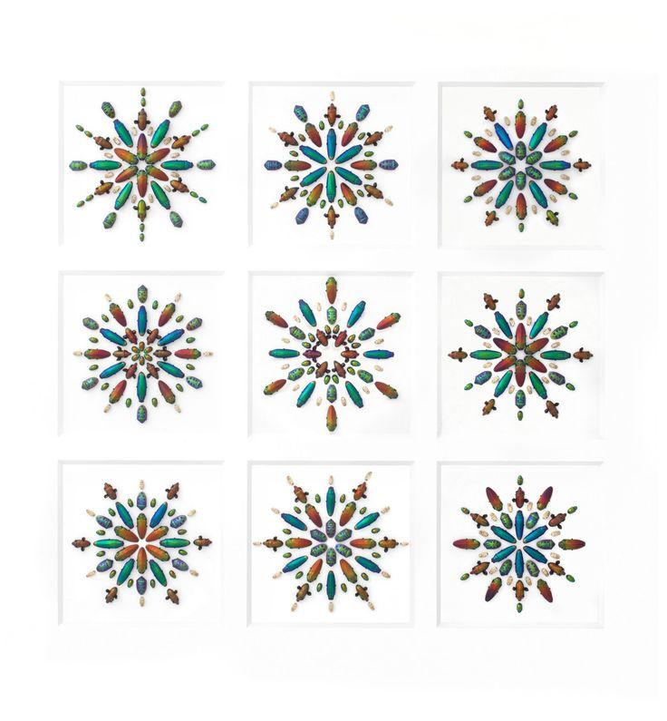 f5491b2a00f32b6a0c1e0f8072ae2bd2 Christopher Marley Artworks