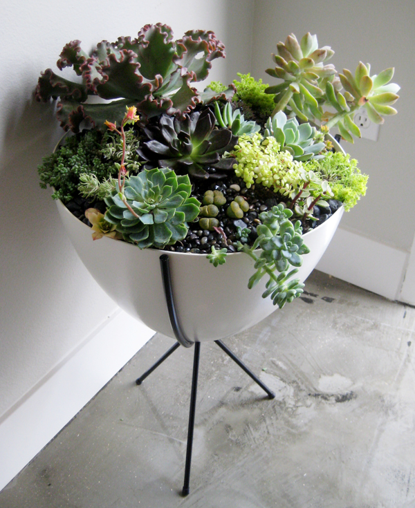 bullet planter 5 Ways to Breathe Life Back into Your Home