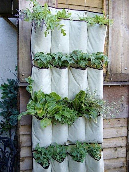 cheapest gardening idea old shoe organiser 25 Indoor Garden Ideas