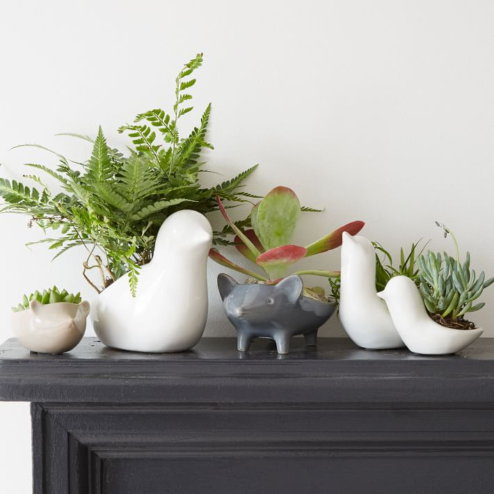 cute hand painted animal planters 25 Indoor Garden Ideas