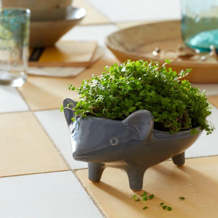 hand painted animal planters 25 Indoor Garden Ideas