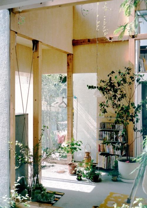 house komazawa park  Tumblr Collection #13