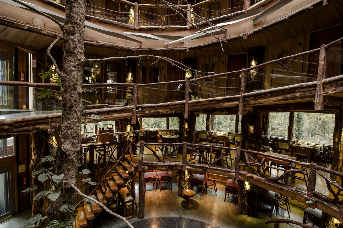 nothofagus hotel spa chile 2 10 Most Amazing Treehouse Hotels From Which You Would Never Wish To Check Out