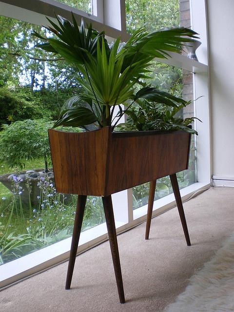 planter 25 Indoor Garden Ideas