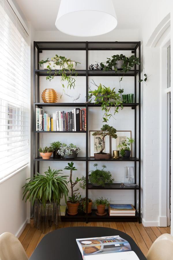 planting shelf 25 Indoor Garden Ideas