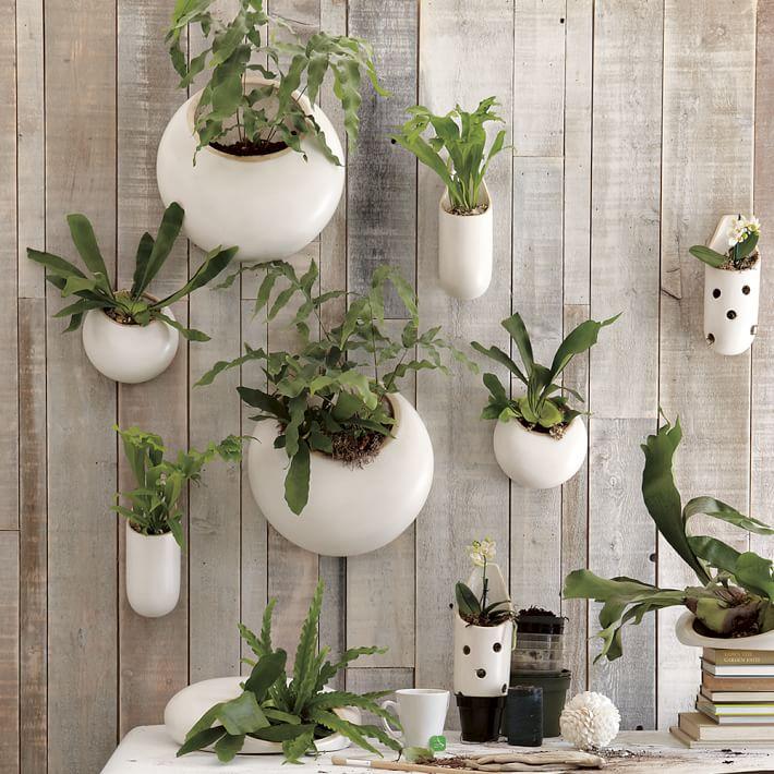 Shane S Ceramic Wall Planters 25 Indoor Garden Ideas