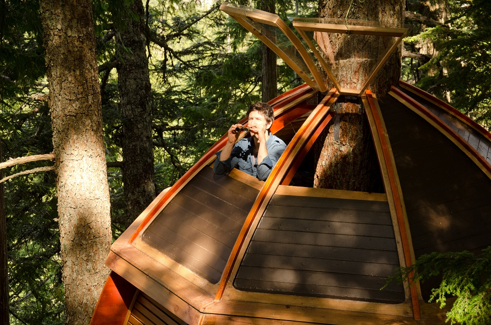 the hemloft canada 2 10 Most Amazing Treehouse Hotels From Which You Would Never Wish To Check Out
