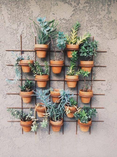 vertical wall garden 25 Indoor Garden Ideas