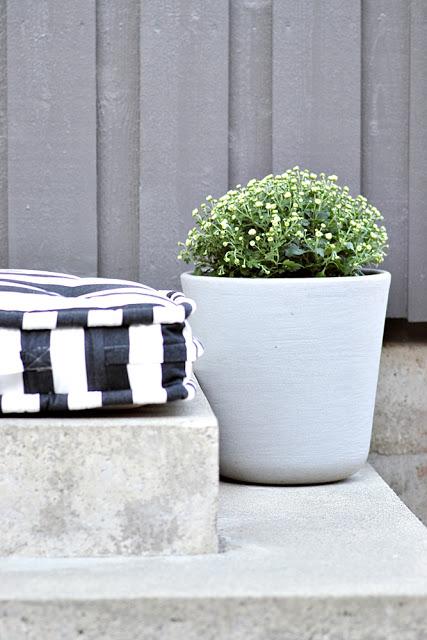 blomster krysantemum 6 Black and White Deck Design