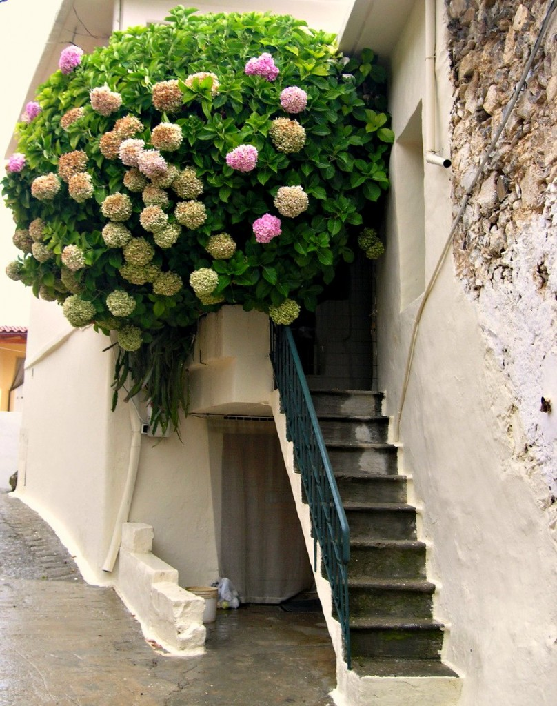 hanging gardens 808x1024 35 Worlds Most Beautiful Balconies