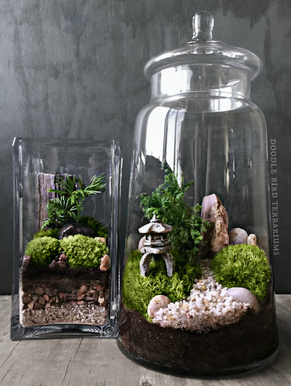 il fullxfull.785708820 5tj8 The Urban Grow   Terrarium