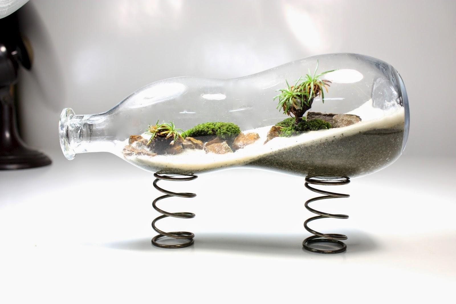 img 2438 The Urban Grow   Terrarium