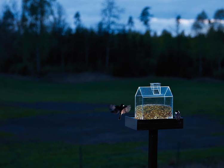 nelson garden bird feeder 2 25 Best Bird Feeders To Attract Birds To Your Garden