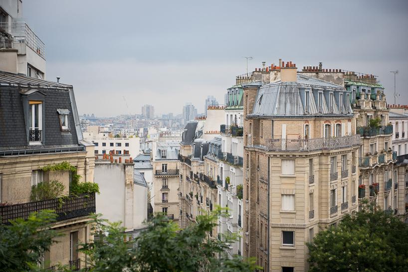 parisian apartment of a young fashion designer 11 Vertical Garden Grows In This Parisian Apartment Of A Young Fashion Designer