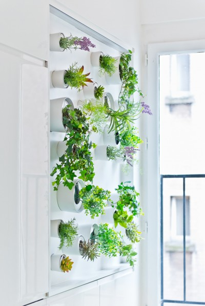 Vertical Garden Grows In This Parisian Apartment Of A Young Fashion Designer