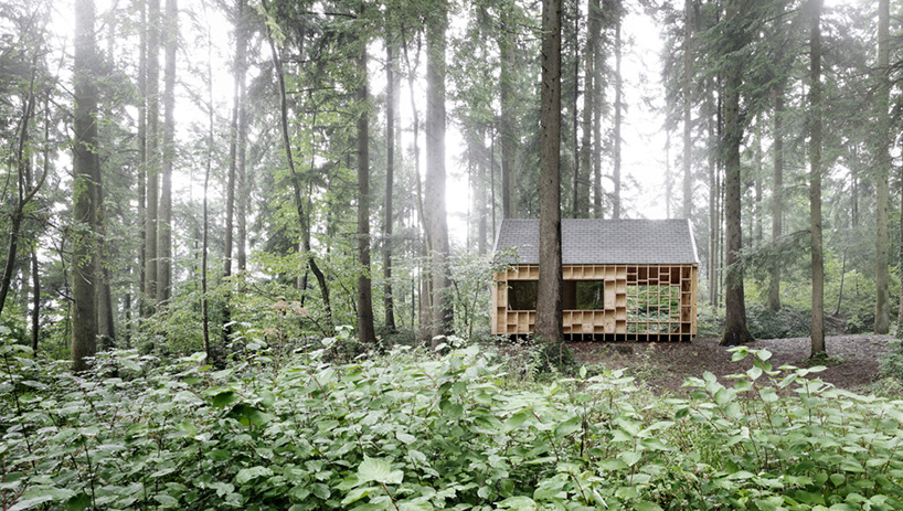cabin in the forest allows children to explore the nature 3 Cabin In The Forest Designed For Children To Explore The Nature