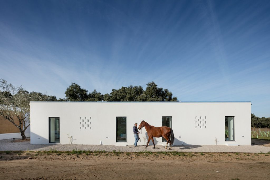 a minimal house in portugal surrounded by vines 6 1024x683 a Minimal House in Portugal Surrounded by Vines