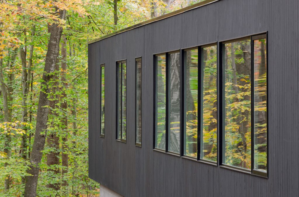 black house hidden in the forest by in situ studio 6 1024x674 Black House Hidden In The Forest By in situ studio