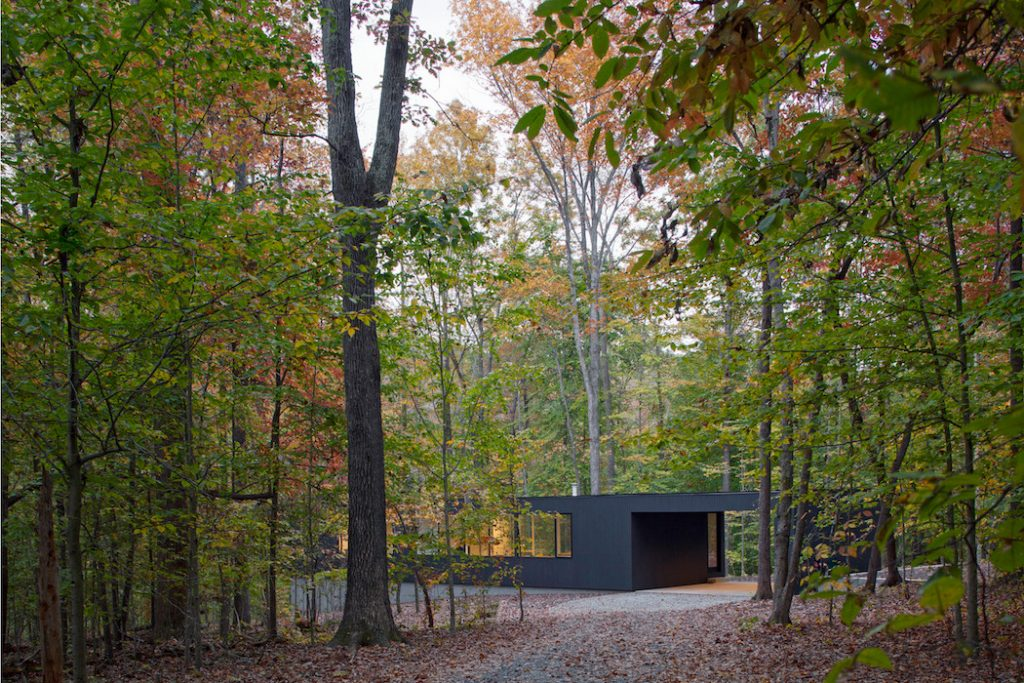 black house hidden in the forest by in situ studio 9 1024x683 Black House Hidden In The Forest By in situ studio