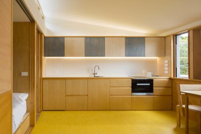Laneway Studio Renovation by Architect Peter McGregor