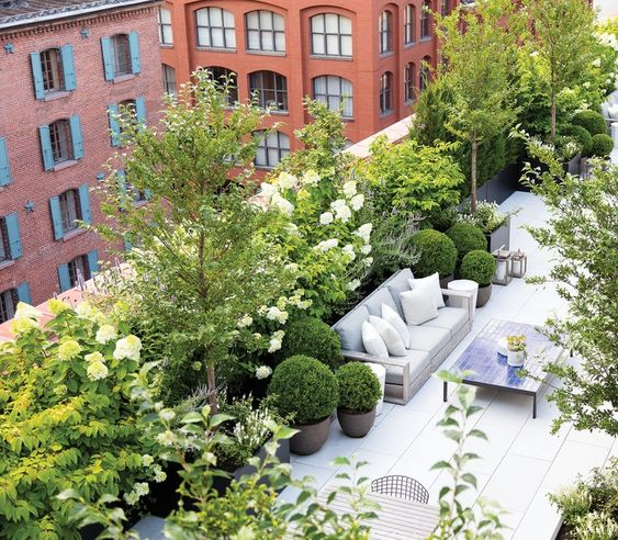 rooftop garden Life of Luxury: 5 different leisure facilities available in buy to let apartments