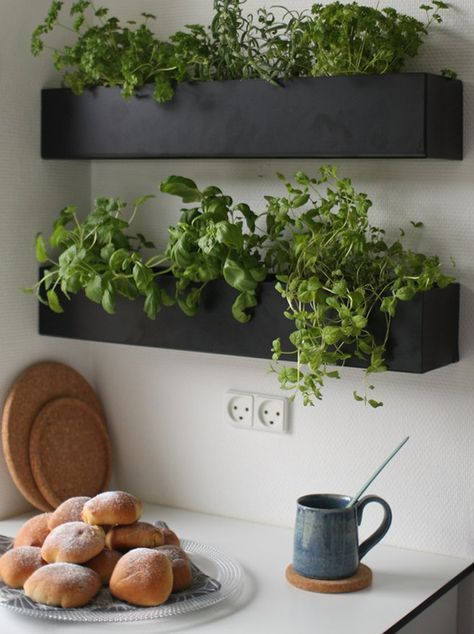 aromatic herbs in shelves These 40+ Kitchen Decor Ideas Will Inspire You To Renovate Yours