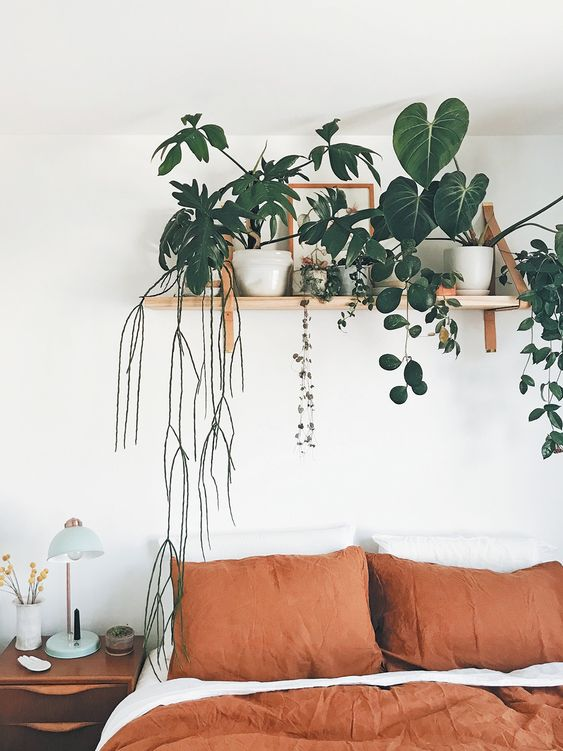 bedroom plant shelf 50+ Aesthetic Bedrooms And 9 Tips On How To Decorate Yours