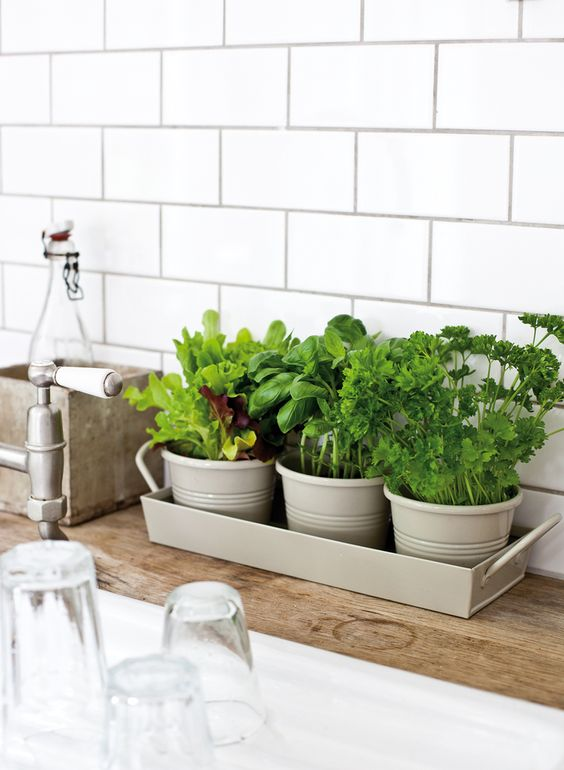 kitchen decor with herbs These 40+ Kitchen Decor Ideas Will Inspire You To Renovate Yours