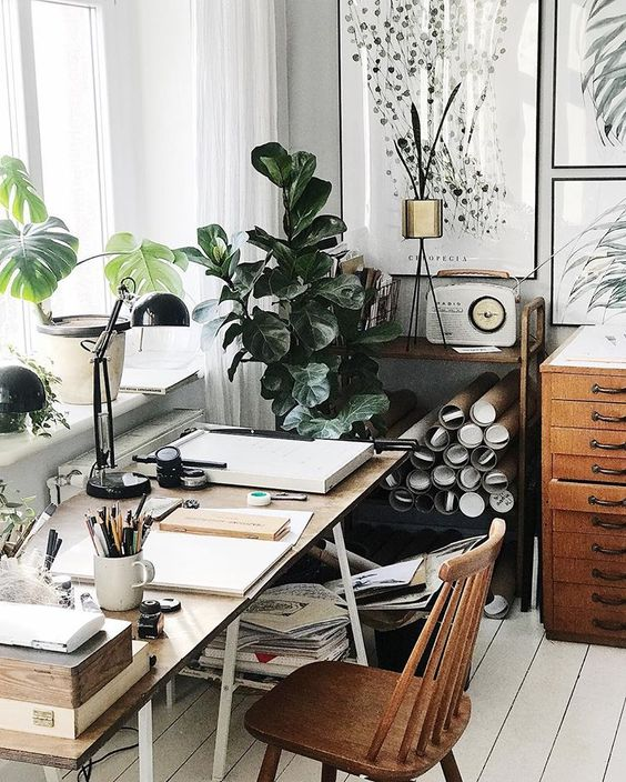 plants in your home office Can Optimal Indoor Quality Boost Your Productivity at Home?